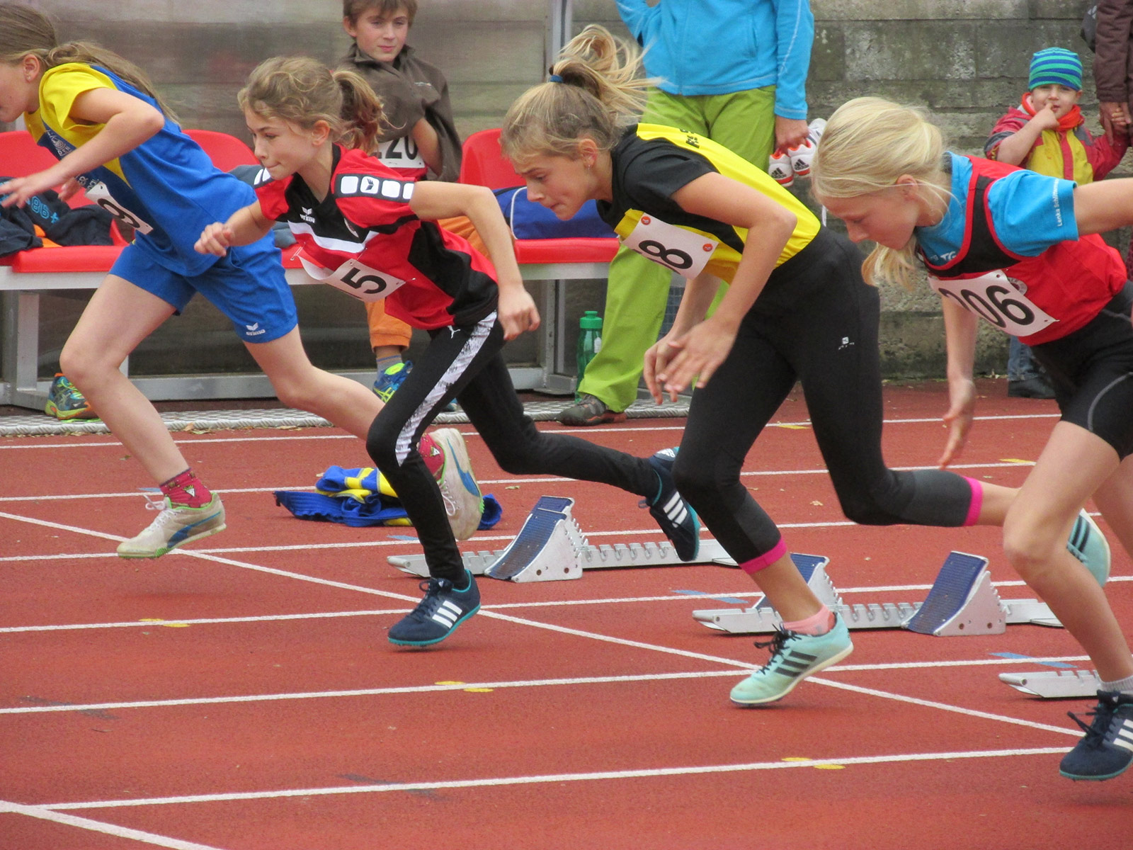 Leichtathletik Dresden